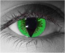Green Reptile Contact Lenses - Green Reptile Contacts by Novelty Mfg