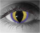 Seducer Contact Lenses - Seducer Contacts by Novelty Mfg