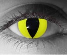 Yellow Cat Contact Lenses - Yellow Cat Contacts by Novelty Mfg