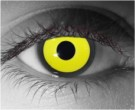 Crow Contact Lenses - Crow Contacts by Novelty Mfg