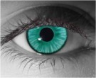 Link Contact Lenses - Link Contacts by Novelty Mfg