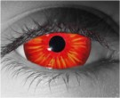 Harpie Contact Lenses - Harpie Contacts by Novelty Mfg