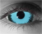 Lycan Contact Lenses - Lycan Contacts by Novelty Mfg