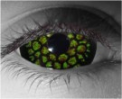 Medusa Contact Lenses - Medusa Contacts by Novelty Mfg
