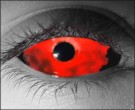 Bloodlust Contact Lenses - Bloodlust Contacts by Novelty Mfg