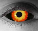 Cerabus Contact Lenses - Cerabus Contacts by Novelty Mfg