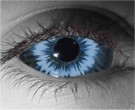Lycan Evo Contact Lenses - Lycan Evo Contacts by Novelty Mfg