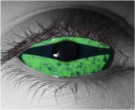 Predator Contact Lenses - Predator Contacts by Novelty Mfg