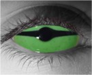 Slither Contact Lenses - Slither Contacts by Novelty Mfg
