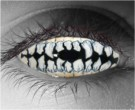 Skeletal Teeth Contact Lenses - Skeletal Teeth Contacts by Novelty Mfg