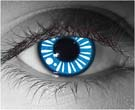 Aino Contact Lenses - Aino Contacts by Novelty Mfg