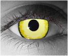 Yellow Contact Lenses - Yellow Contacts by Novelty Mfg