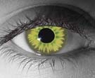 Avatar Contact Lenses - Avatar Contacts by Novelty Mfg